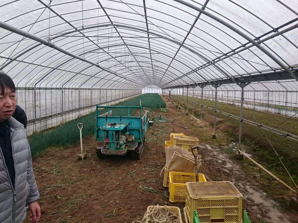 農業視察研修